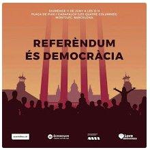 Referèndumés democràcia